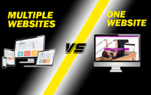 Multiple Websites VS One Website